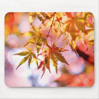 Tapis de souris de feuille d'automne