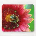 Tapis de souris de fleur sauvage et d'abeille