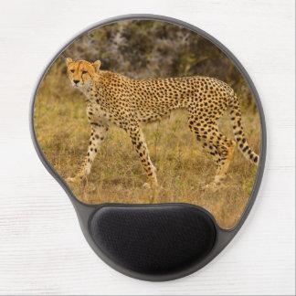Tapis de souris de guépard