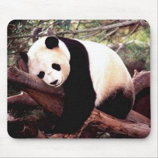 Tapis de souris de panda de sommeil