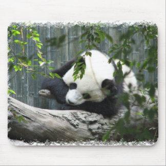 Tapis de souris de panda géant