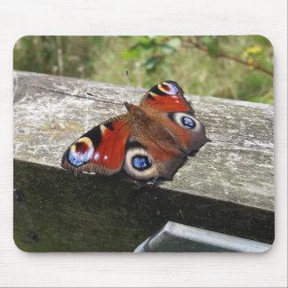 Tapis de souris de papillon de paon