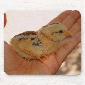 Tapis de souris de poulet de bébé