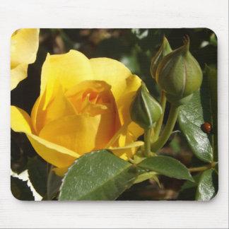 Tapis de souris de rose jaune et de coccinelle