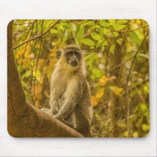 Tapis de souris de singe de la Gambie