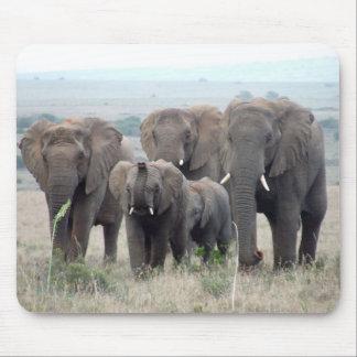 tapis de souris de troupeau d'éléphant