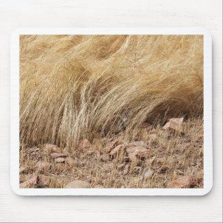 Tapis De Souris Détail d'un champ de teff pendant la récolte
