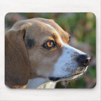 Tapis De Souris Détermination de beagle