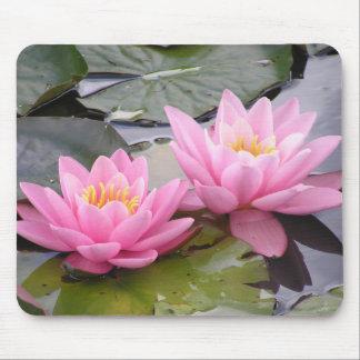 Tapis De Souris Deux nénuphars de rose sauvage dans un étang