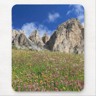 Tapis De Souris Dolomiti - pré fleuri