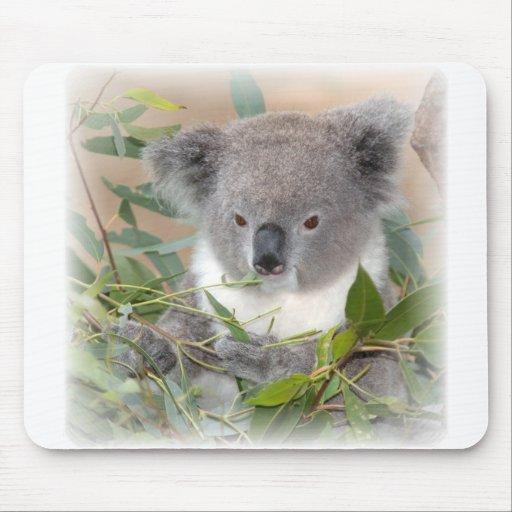 Tapis de souris d'ours de koala
