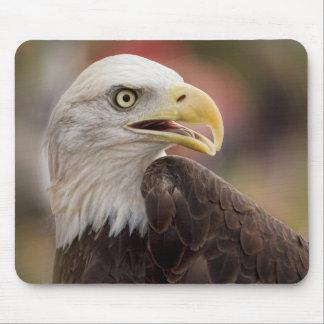 """Tapis De Souris """"Eagle chauve américain """""""
