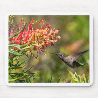 Tapis De Souris En vol alimentation de colibri
