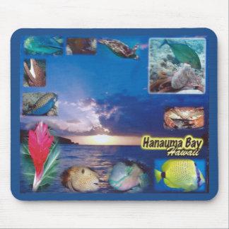 Tapis De Souris Espèce marine de baie d'Hawaï Hanauma