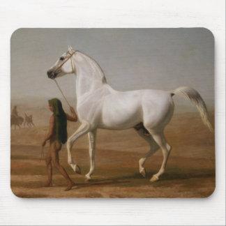 Tapis De Souris Étalon arabe blanc