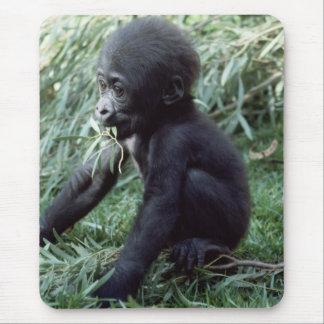 Tapis De Souris Faune réglée - primats 8
