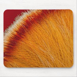 Tapis De Souris Fermez-vous de la plume orange