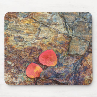 Tapis De Souris Feuille d'automne sur la roche, la Californie