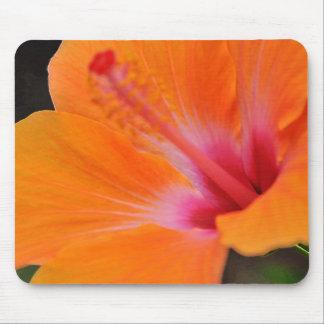 Tapis De Souris Fleur de ketmie d'Hawaï Mousepad