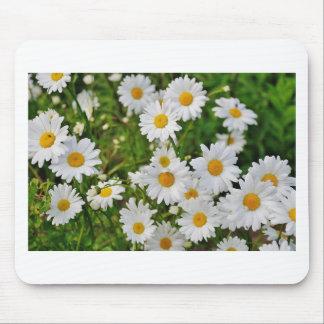 Tapis De Souris Fleur de marguerite blanche