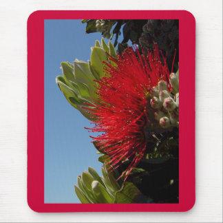 Tapis De Souris Fleur de Pohutakawa