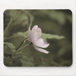 Tapis De Souris fleur pourpre aged8 de fleurs