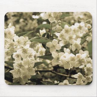 Tapis De Souris fleurs blanches aged7