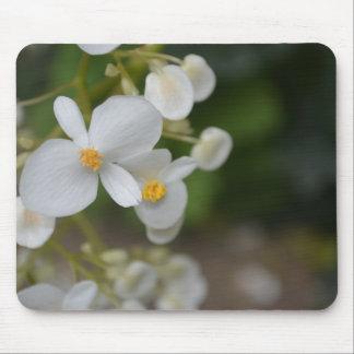 Tapis De Souris Fleurs blanches de bébé