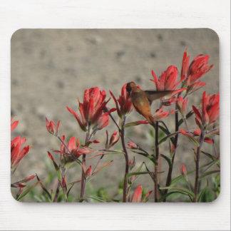 Tapis De Souris Fleurs cardinales de colibri