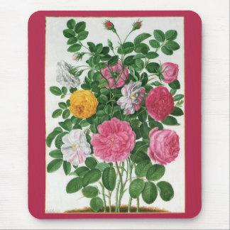 Tapis De Souris Fleurs de floraison de cru, roses de jardin de