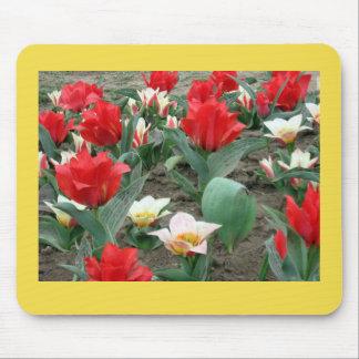 Tapis De Souris Fleurs de ressort