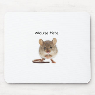 Tapis de souris frais