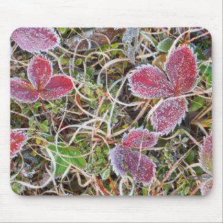 Tapis De Souris Frost a couvert le feuille, Canada