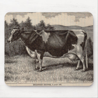 Tapis De Souris Génisse du 19ème siècle du Holstein d'impression