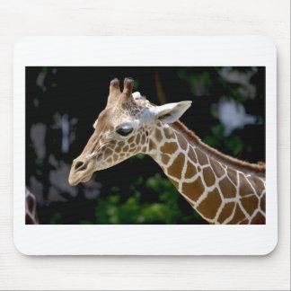 Tapis De Souris Girafe de Brown pendant la journée