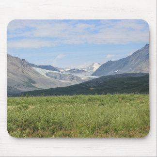 Tapis De Souris Glacier