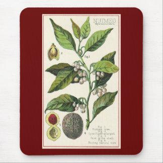 Tapis De Souris Graines vintages de fruit d'usine de noix de