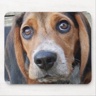 Tapis De Souris Grand chiot de beagle observé par Brown
