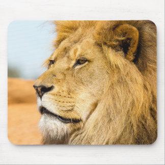 Tapis De Souris Grand lion regardant loin