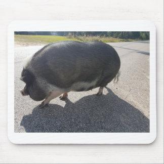 Tapis De Souris Grand porc