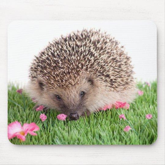 Tapis De Souris hedgehog,
