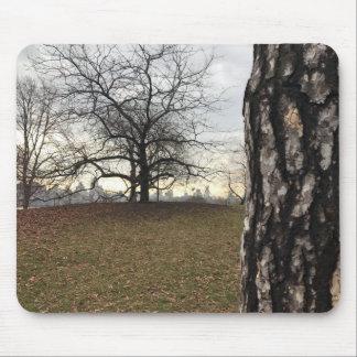 Tapis De Souris Horizon de lever de soleil d'arbre de Central Park