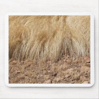 Tapis De Souris iDetail d'un champ de teff pendant la récolte