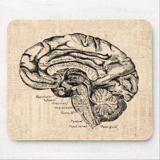 Tapis De Souris Illustration vintage Mousepad de cerveau