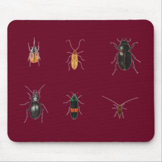 Tapis De Souris Insectes 2011