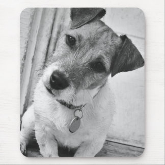Tapis De Souris Jack Russell Terrier