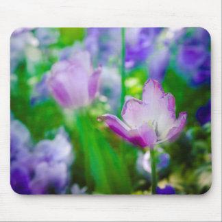 Tapis De Souris Jardin de tulipe, Giverny, France