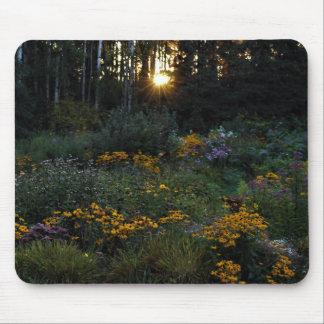 Tapis De Souris Jardins de coucher du soleil début septembre