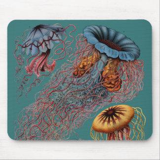Tapis De Souris La disco Medusae d'Ernst Haeckel
