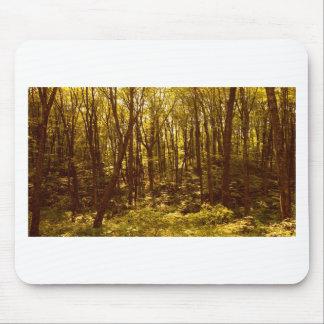 Tapis De Souris La forêt montre du doigt